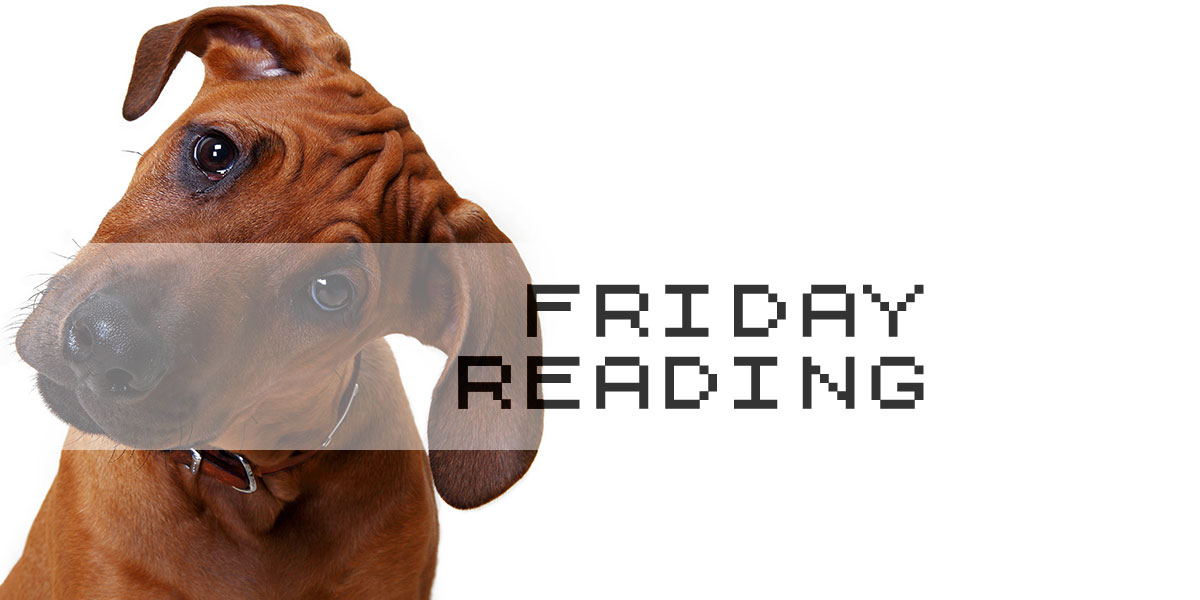 Friday Reading 11/11/2016
